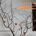 blog-citáty-výroky-krása-srdca