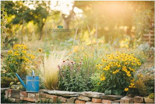 lifestyle-blog-zivotny-styl-liferest-permakulturna-zahrada