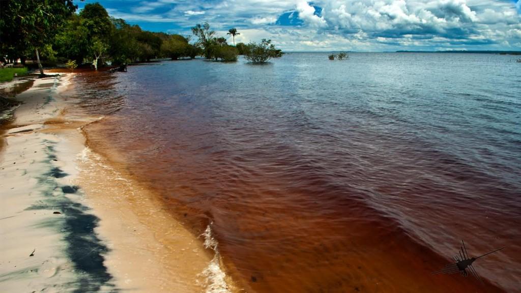 blog-o-cestovani-rio-negro-amazonsky-dazdovy-prales-photoandtraveling