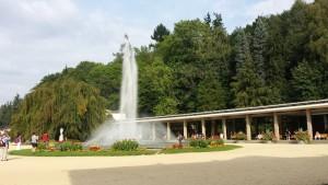 LL-fontana